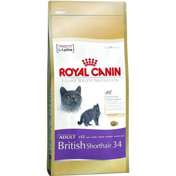 Royal Canin British Shorthair recenzie