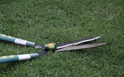 nožnice na trávu
