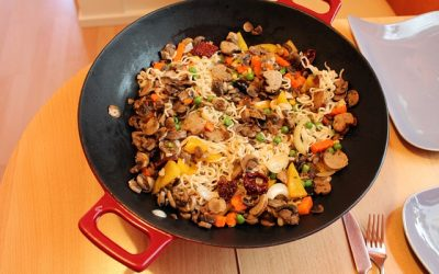 panvice wok